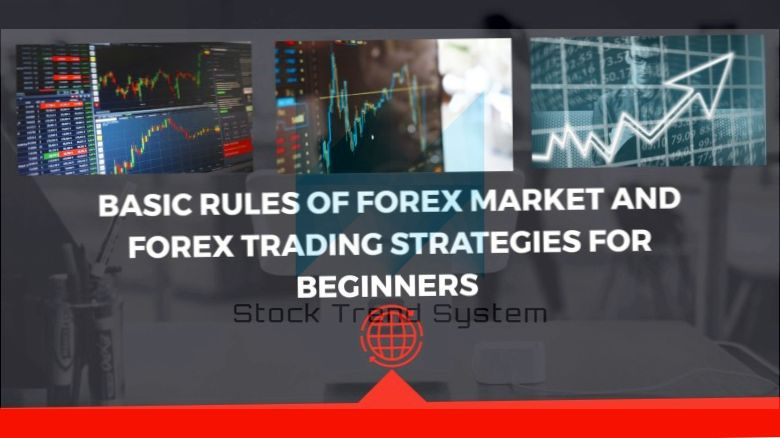 Trading EUR / USD with Forex 2020 - tips and strategies for traders